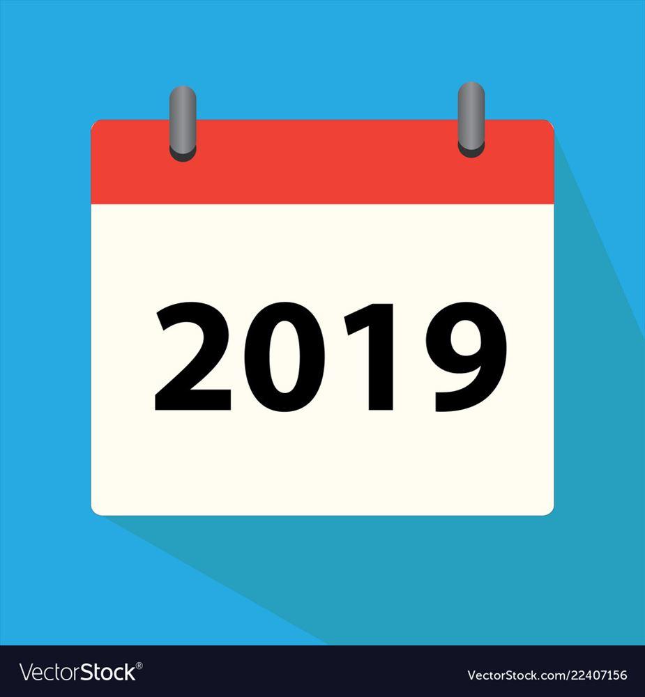 Báo cáo tài chính năm 2019